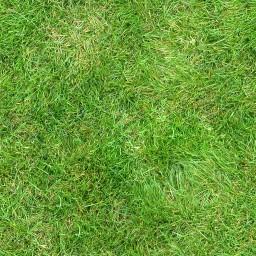 Nová textura trávy